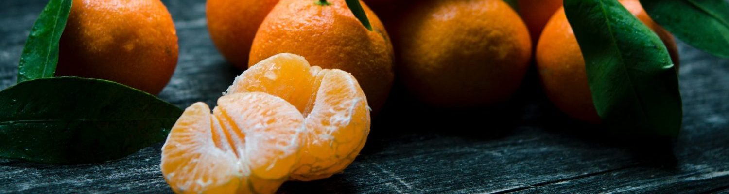 Tangerine Web Works – Web Design and Communication Services