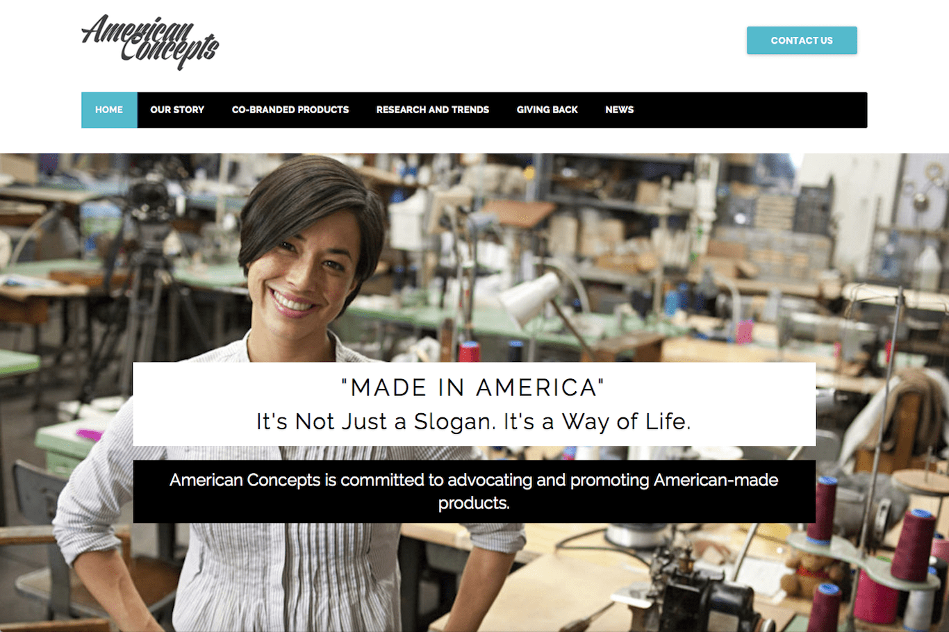 American Concepts - WordPress Websites